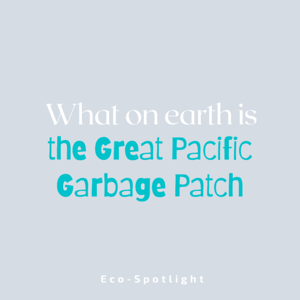What On Earth is the Great Pacific Garbage Patch