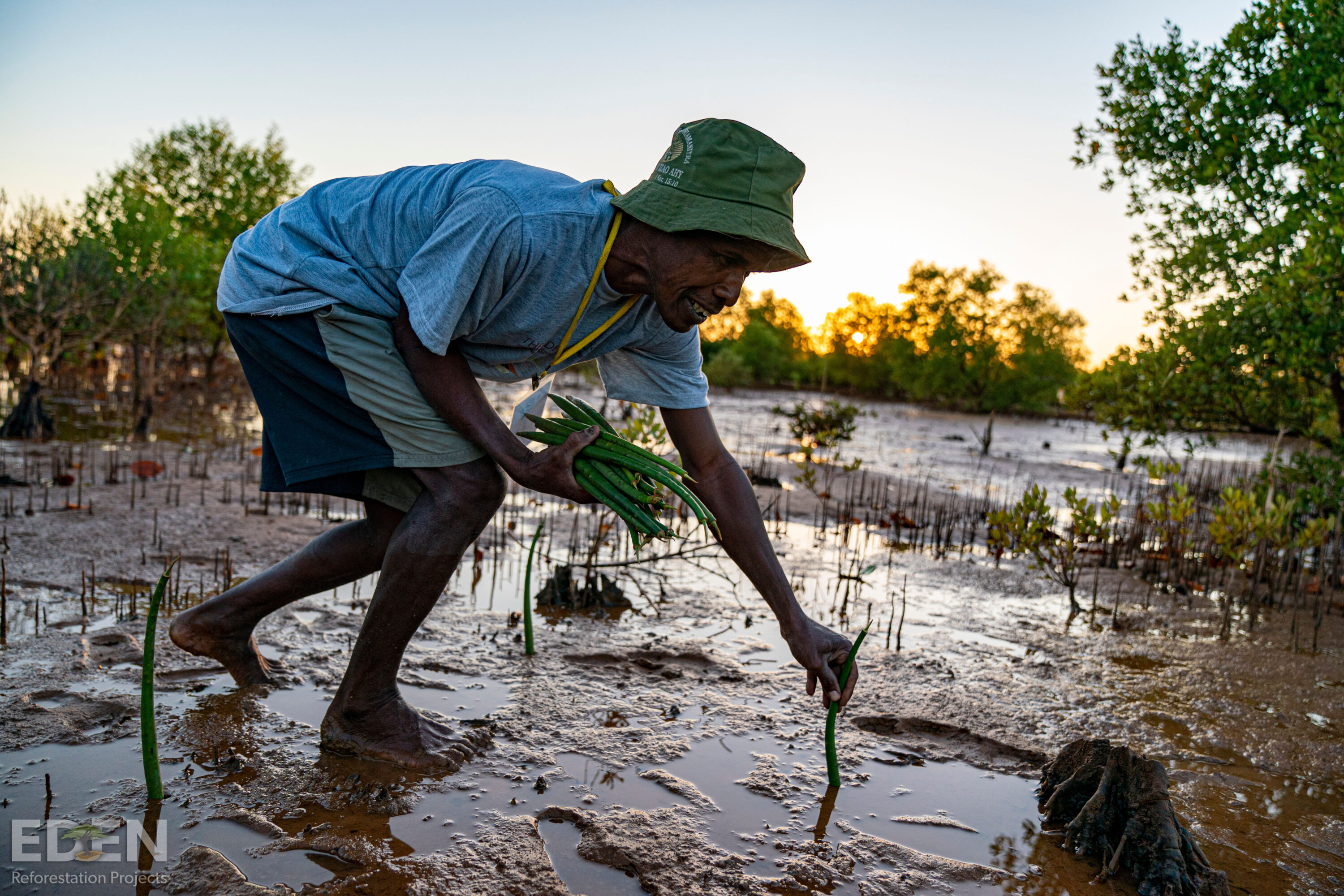 An African man is planting a tree in Madagascar.