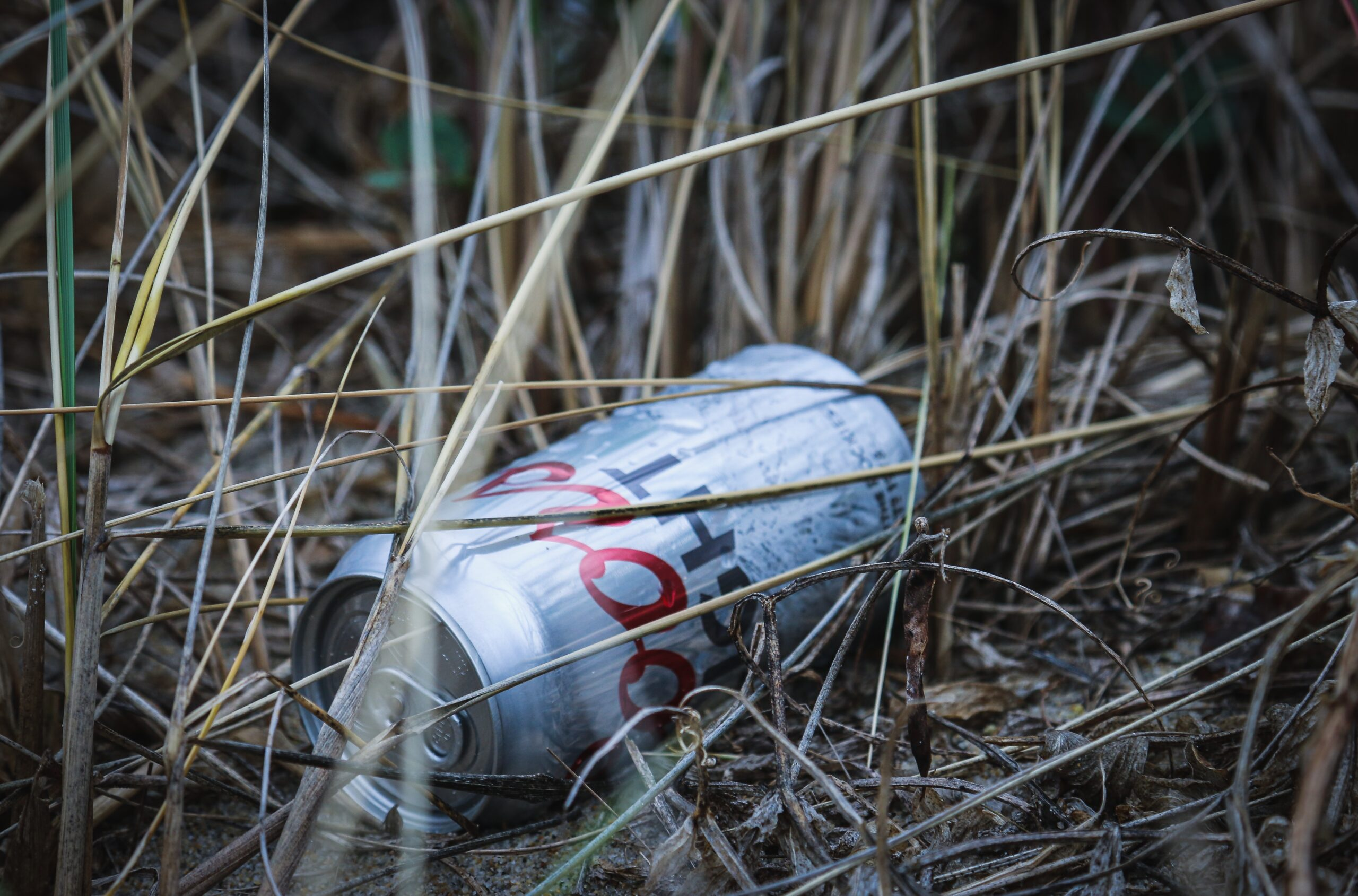 A can in high grass.