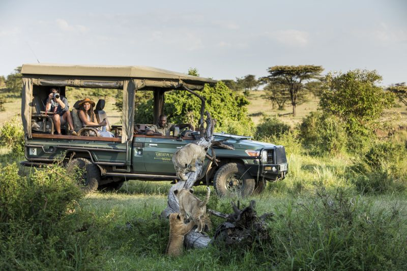 A safari in Africa.