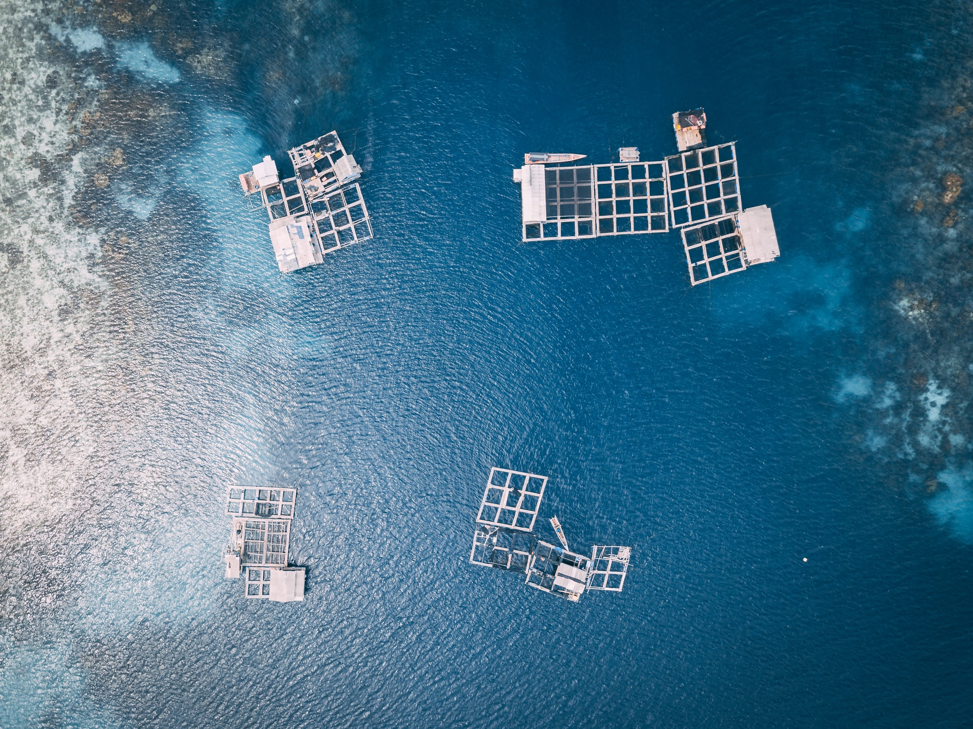 Aquaculture from above
